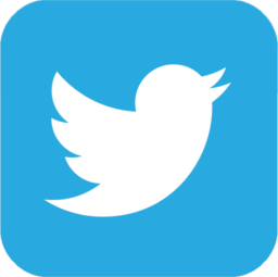 icon 2015 twitter